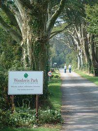 Woodovis Park Tavistock Devon On