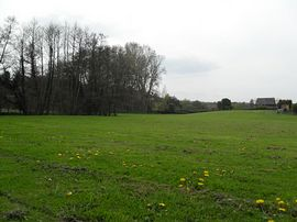 picture of site